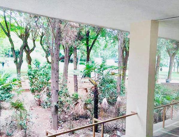 Igema-Vistas-Jardines2